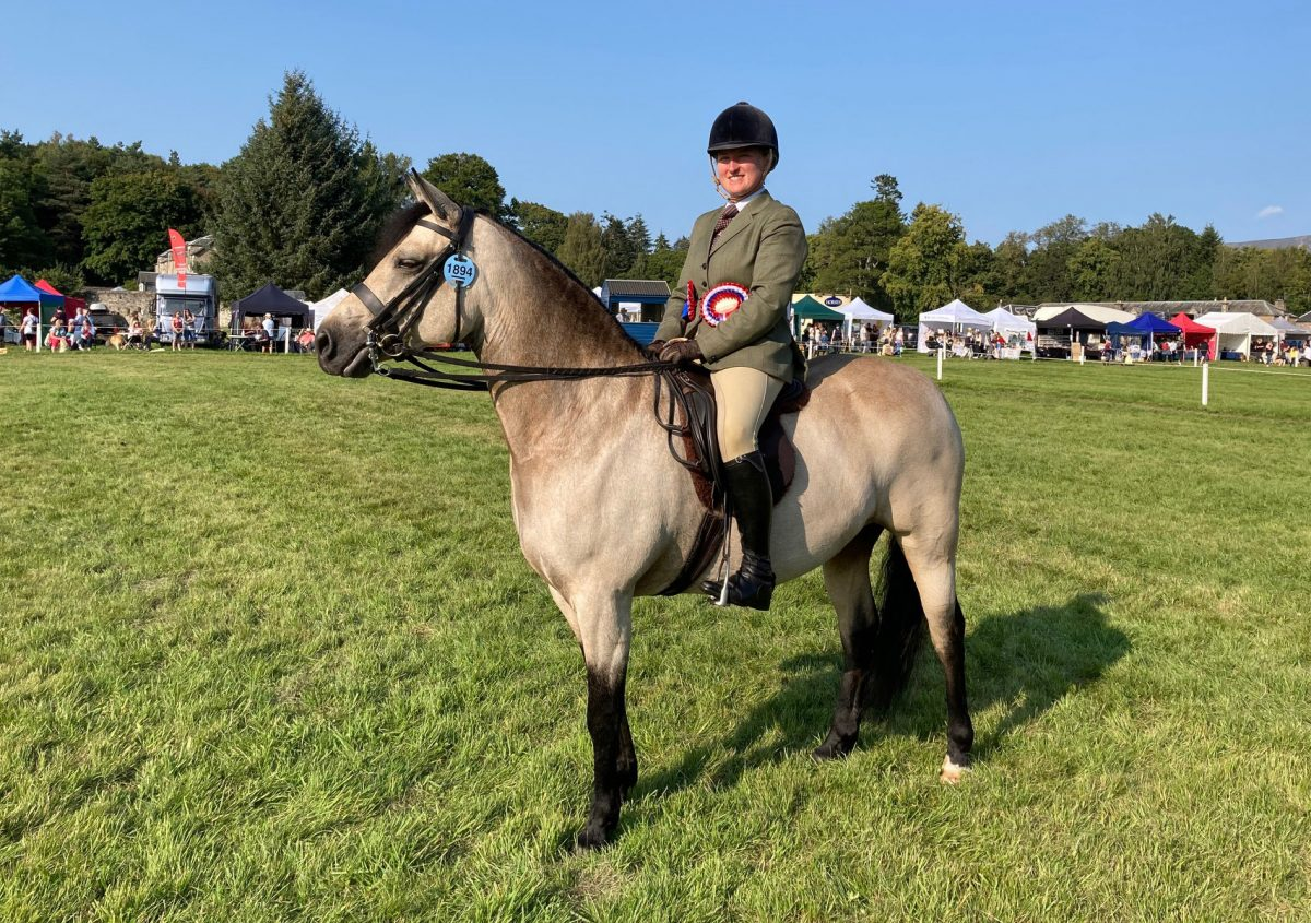 Friday round up from the Showing Rings